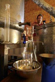 Formation en Aromathérapie & Distillation : Floraluna vous propose 5 dates possibles sur 2019
