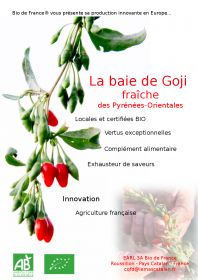 Découvrez la gamme de jus de fruits frais au Gojis cueillis cette semaine de l'EARL 3A