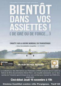 Ciné-débat Jeudi 16 novembre à 19h Cinéma Castillet centre ville Perpignan