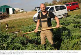 Maraîchage, arboriculture, vigne, élevage... le Roussillon est le champion du bio