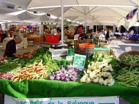 Biogénération : marché bio festif Place République à Perpignan