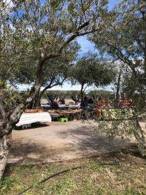 Marché Fermier de rentrée au Mas Bécha le dimanche 13 septembre