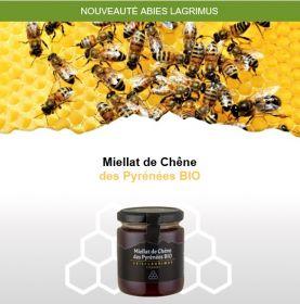 Le Miellat de Chêne Bio des PO, un miel unique aux saveurs intenses