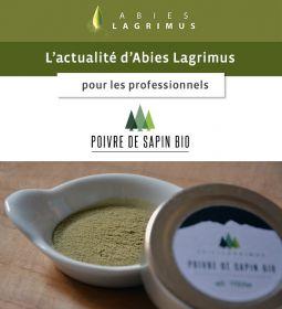 Un condiment original et unique au monde : Le Poivre de Sapin, épice inédite