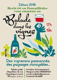 ROOTS 66 en Fenouillèdes vous emmène en Balade dans les vignes