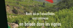 Roots 66 en Fenouillèdes vous emmène tout l'été en balade dans les vignes