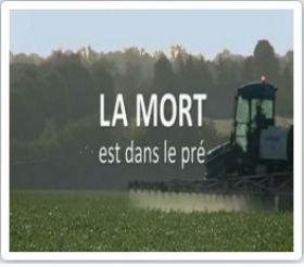 Cinéma Le Castillet Mardi 3 novembre à 19H Invitation au Ciné-débat