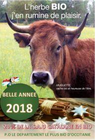 Belle nouvelle année 2018 !