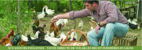 Pour vos réservations festives de volailles bio : AUX SAVEURS PAYSANNES à Saint Estève